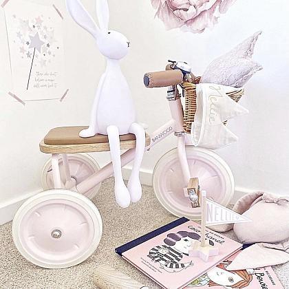 Kindermusthaves - Fantastische roze driewieler!