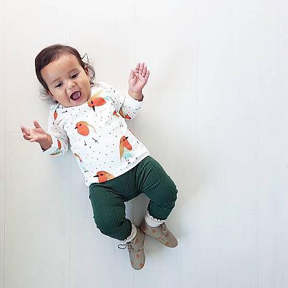 Kindermusthaves - Shirt met roodborstjes!