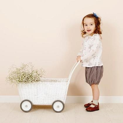 Kindermusthaves - PRE ORDER: de Strolley!
